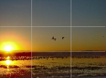 The rule of 3rds grid in my viewfinder.