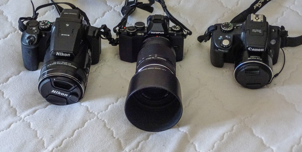 Nikon P900, Olympus OM-D E10 with 75-300 zoom, Canon SX50HS